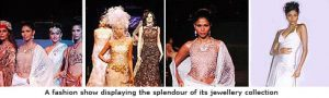 India's Leading Diamond Jewelry Chain Goes 'Live'1